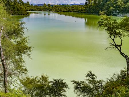 scenic Hot springs lake in Rotorua, New Zealand