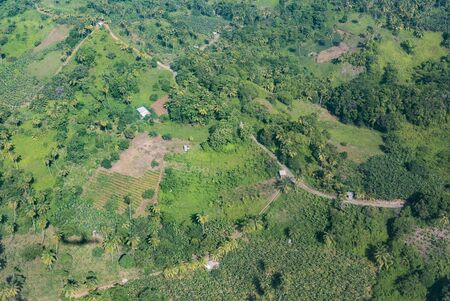 agriculture aerial in the green  jungle of  Dominica 版權商用圖片