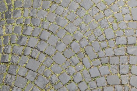 old cobble stone with green weed in gap 스톡 콘텐츠 - 127364297