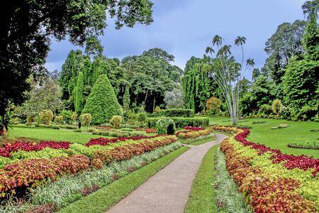 botanical Garden of Peradeniya, Kandi under dark raining season clouds