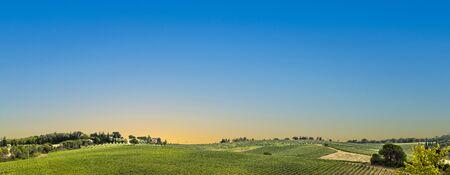 scenic vineyards at Greve in the CHianti Region in Italy, Tuscany Zdjęcie Seryjne