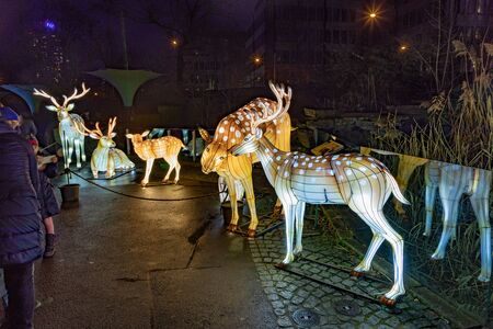 Cologne, Germany - January 19, 2020: CHINA LIGHT-FESTIVAL from DECEMBER, 7th 2019 TO JANUARY, 19th 2020 at Cologne Zoo.