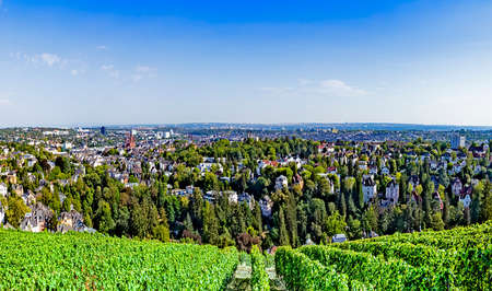 Wiesbaden, Germany as viewed from Neroberg, a hill to its north, where visitors may view a panorama of the city. A vineyard is the foreground and Marktkirche stands out in the city skyline.
