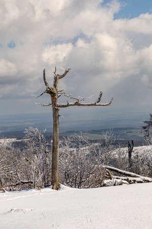 scenic snow landscape in Germany, Hesse, Feldberg