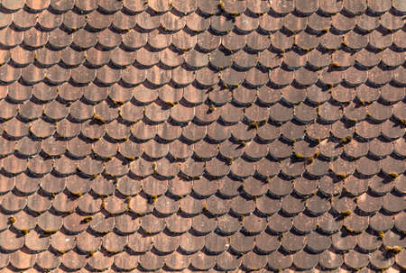 old red tiles at the roof gives a harmonic background Фото со стока