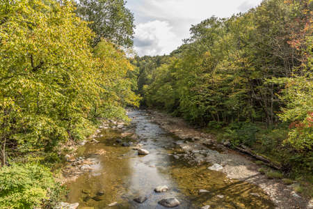 rock river in Williamsville, Vermont with green trees