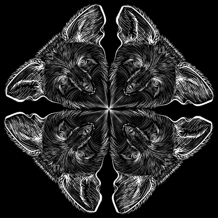 angry sky: Vector Image. Four bat on a black background Illustration