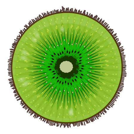 Illustration of a ripe kiwi. Food Vector Image