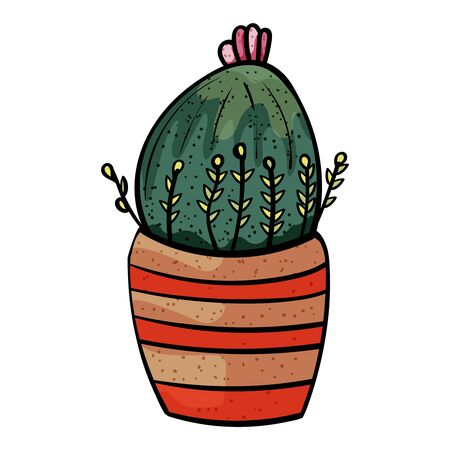 Plant from the family of succulents. Cactus in a pot with stripes. - Vector.