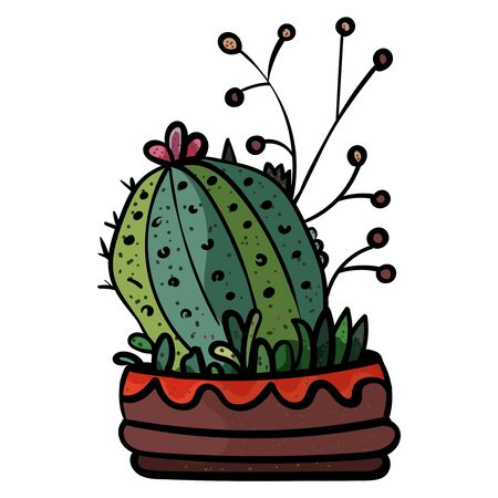 Cactus In A Pot. Botanical illustration. Succulent plant. Scandinavian style, comfort in the house. Hygge. - Vector. Vector illustration