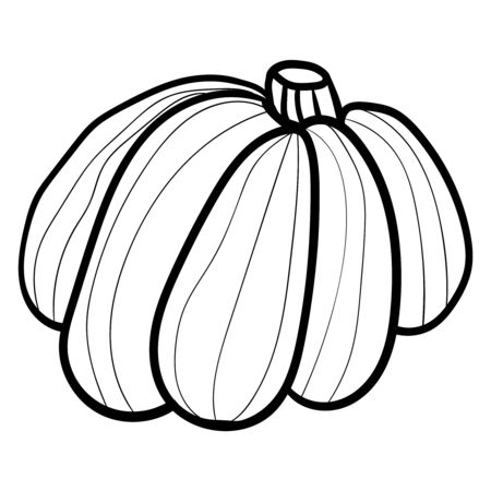 The pumpkin. Doodle illustration. Coloring page, Coloring book. Contour. Symbol of celebration and comfort. Halloween or Thanksgiving. Cozy Home. -Vector. Vector illustration