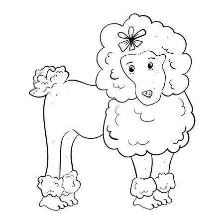 Poodle with bow on the head. Hand drawn vector illustration. Black and white illustration