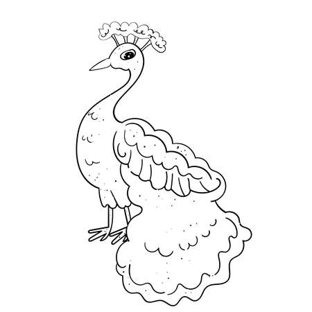 Cute Bird Peacock with a royal tail. Festive Illustration for Wedding and other events. Vector illustration drawn by hand. Illustration for coloring.