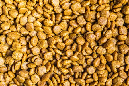 Close up macro photo of pet cat dog food.