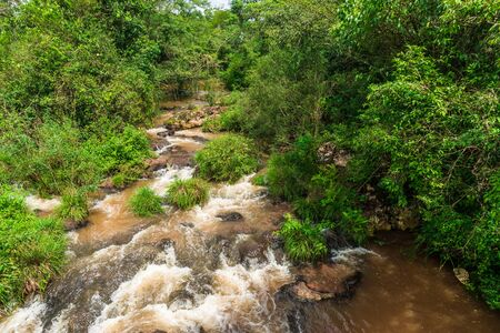 Wide angle landscape view of a tropical river in rainforest jungle Stock Photo