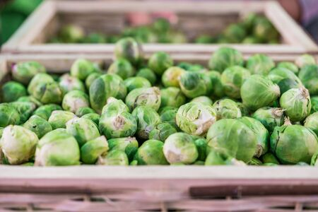 Organic brussel sprouts vegetables at a street food market fair festival.