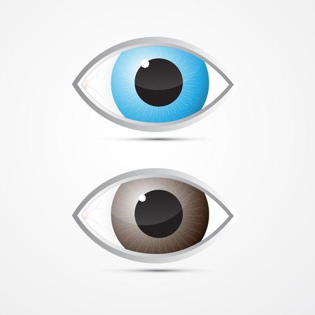 olhos castanhos: Vector Azul e Brown Eyes