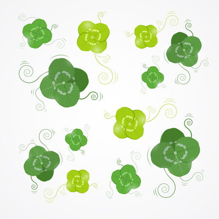 Vector Green Clover Leaves Isolated on White Background