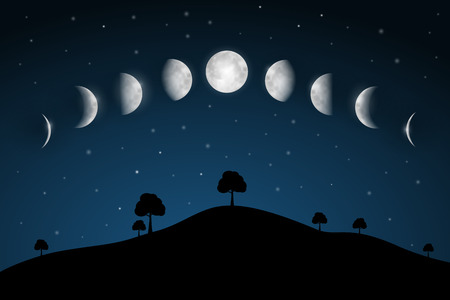 moon and stars: Moon Phases - Night Landscape with Trees