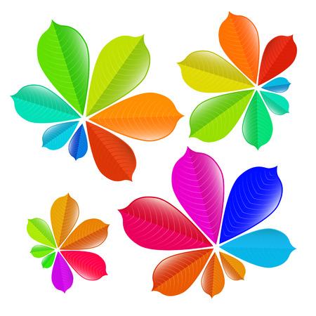 aesculus hippocastanum: Colorful Chestnut Leaves Set