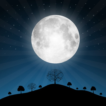 moon and stars: Vector Full Moon Illustration with Stars and Trees