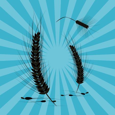 Vector Ears of Wheat Black Silhouette on Retro Blue Background Vector