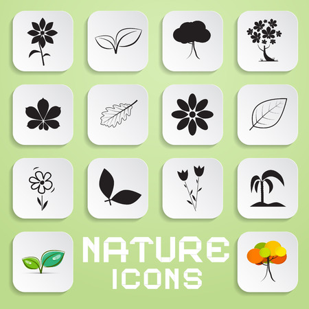 water chestnut: Nature Paper Vector Icons Set with Flowers, Leaves and Trees Symbols Illustration