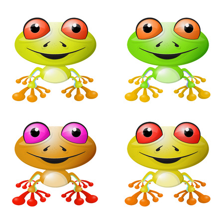 Red-eyed Tree Frog Vector Illustration Vector