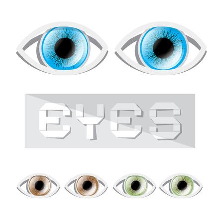 olhos castanhos: Vector Blue - Verde e Olhos Castanhos Set Ilustração