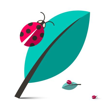 catarina caricatura: Mariquitas - Mariquitas en la ilustraci�n del vector de la hoja aisladas sobre fondo blanco