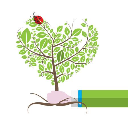 Tree in Human Hand with Ladybird, Ladybug. Isolated Vector Illustration.