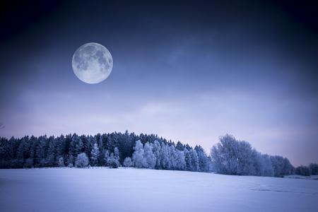 冬の風景。フィールドは、雪で覆われています。凍結の森林と満月。
