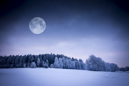 Winter Landscape. Field Covered with Snow. Frozen Forest and Full Moon.