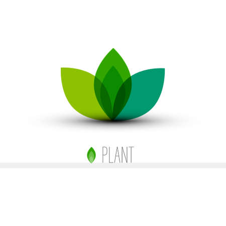 Plant Icon for Logo Designs - Green Leaves Vector Symbol Isolated