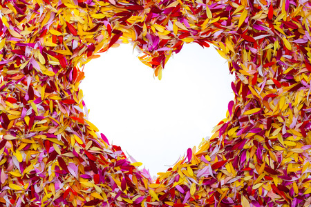 A heart inside multicolored pile of petals Stock Photo - 28392073
