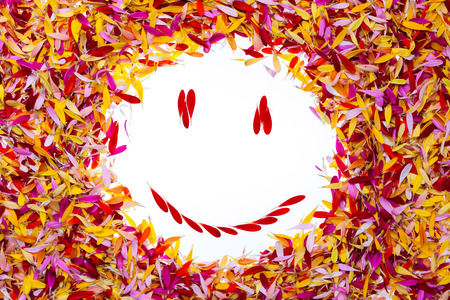 A smiley inside multicolored pile of petals Stock Photo - 28392077