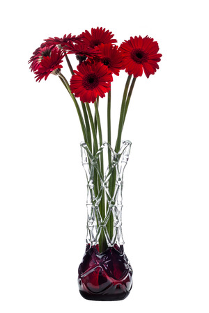 Abstract Vase On White Background With Red Gerbera Flowers Stock
