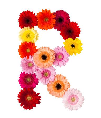 Stock Photo - flower letter R  R Letter In Flower
