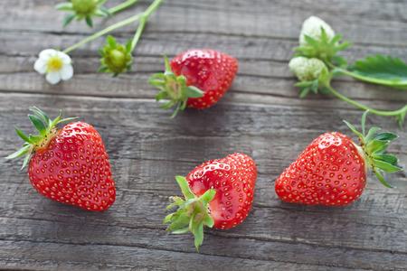 freshly picked: Freshly picked strawberries on wooden background Stock Photo
