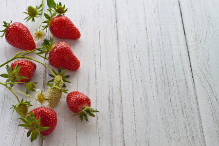 Freshly picked strawberries on a white wooden background