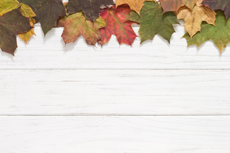 november: Autumn background with leaves Stock Photo