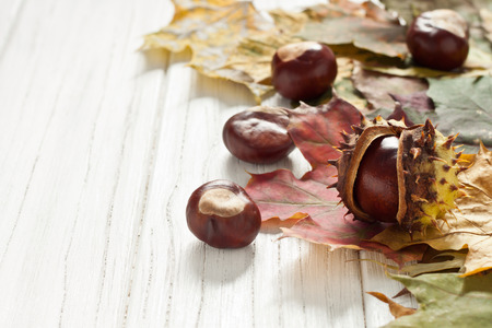 Autumnal decoration of chestnuts and leaves photo