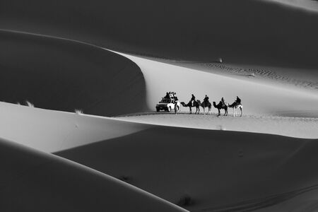 Camels caravan, 4x4 ride safari on sand dunes of Sahara Desert. Morocco, Africa. People in the middle of the desert. Black and white, monochrome. Tourist attraction. Extreme sport traveling.