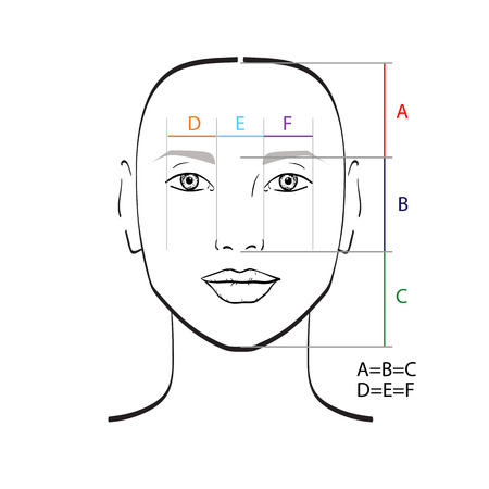 Perfect face proportions. Vector illustration. 版權商用圖片