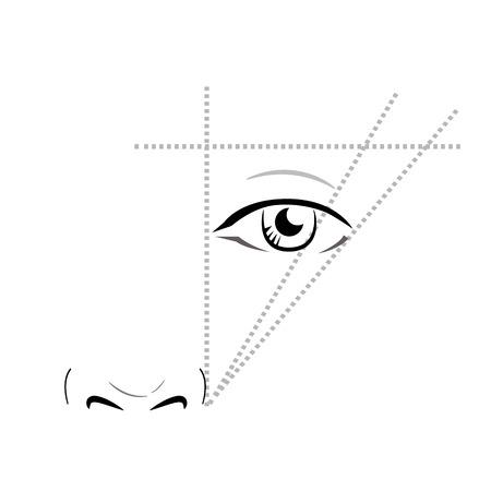 眉の描き方は。ベクトル トレンディな化粧眉方式です。 写真素材 - 61219384