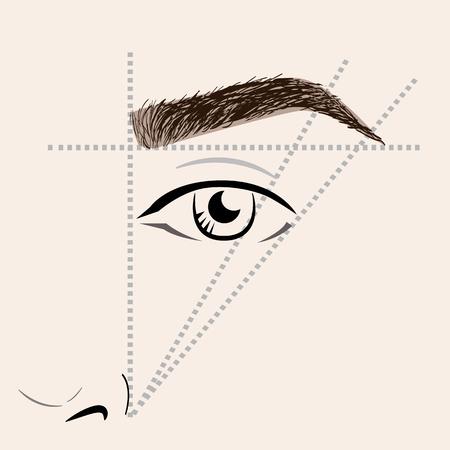 Hoe om de wenkbrauwen te schilderen. Vector trendy make-up wenkbrauwen regeling.