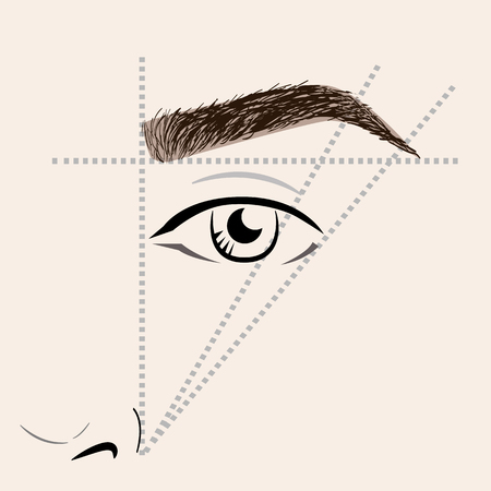 How to paint the eyebrows. Vector trendy makeup brows scheme. Stok Fotoğraf - 61219405