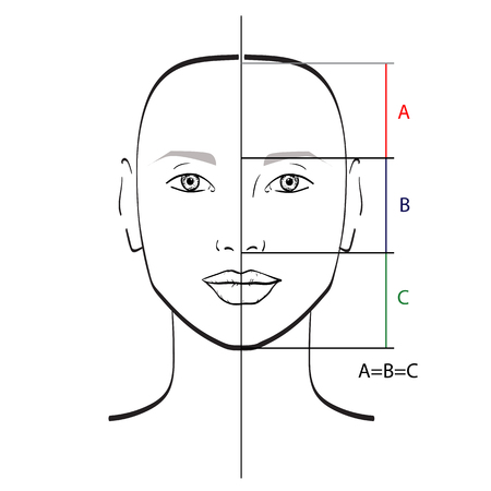 Perfect face proportions template. Vector illustration.