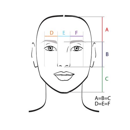 完璧な顔の比率のテンプレートです。ベクトルの図。