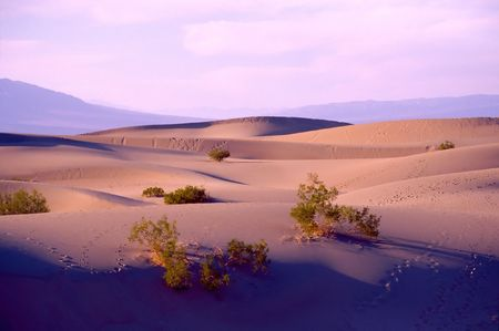 Death Valley is the lowest, driest and hottest valley in the United states. It is the location of the lowest elevation in Western hemisphere photo